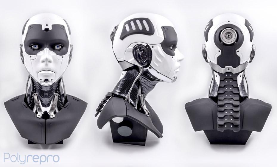 Profil Polybot
